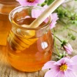 Fresh Honey — Stock Photo #10684869