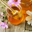 Fresh Honey — Stock Photo