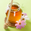 Honey — Stock Photo #10685082