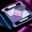 Eye Shadow Closeup. Professional Make-up — Stock Photo