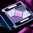 Eye Shadow Closeup. Professional Make-up - Zdjęcie stockowe