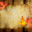 Autumn Leaves on the Old Paper sheet - Stock Photo