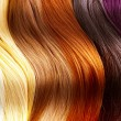 Foto Stock: Hair Colors Palette