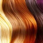 Hair Colors Palette — Stock Photo