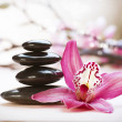 Spa Stones and orchid flower — Foto Stock