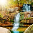 Waterfall in forest — Stock Photo #10685848