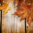 Stock Photo: Autumn Leaves over wooden background.With copy space