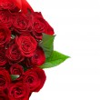 Red Roses Bouquet border — Stock Photo