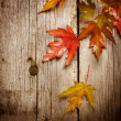 Autumn Leaves over wooden background.With copy space — Stock Photo