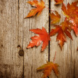 Autumn Leaves over wooden background.With copy space — Stock Photo #10686040