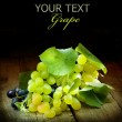 Grapes Isolated On Black — Foto de Stock
