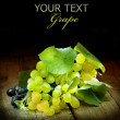 Grapes Isolated On Black — Stock fotografie