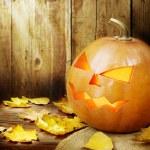 Halloween — Foto de Stock