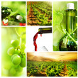 Stock Photo: Wine. Beautiful Grapes Collage