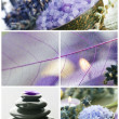 Royalty-Free Stock Photo: Beautiful Spa Collage