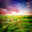 Green Field And Beautiful Sunset — Stock Photo
