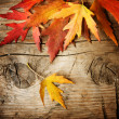 Autumn Leaves over wood background. With copy space — 图库照片