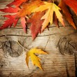 Foto Stock: Autumn Leaves over wood background. With copy space