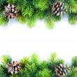 Stock Photo: Christmas Fir Tree Border