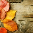 Autumn Leaves over wooden background. With copy space — Stock Photo #10687295