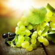 Stock Photo: Grapes. Grapevine Over Vineyard Background