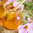 Healthy Honey - Stock Photo