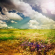 Beautiful Nature Rural Landscape - Foto Stock
