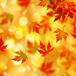 Autumn — Foto de stock #10687656