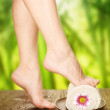 Spa. Beautiful Woman Legs Over Nature Background — Stock Photo #10687742