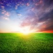 Green Field And Beautiful Sunset Or Sunrise — Stock Photo #10687885