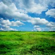 Beautiful Nature Landscape — Stock Photo