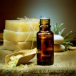 Stock Photo: SpTreatment. Aromatherapy. Essential Oil