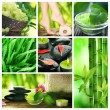 Beautiful Spa Collage — Stockfoto