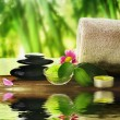 Spa Treatment — Stock Photo #10688563
