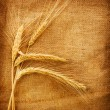 Wheat Ears Over Burlap Background — Foto Stock