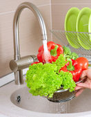 Fresh Vegetables Washing — Stock Photo