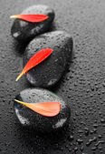 Zen Spa Stones Over Black — Stock Photo