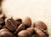 Coffee Beans. Selective Focus — Stock Photo