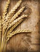 小麦耳朵上木。食品背景 — 图库照片