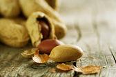 Peanuts Closeup — Stock Photo