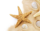 Sand And Seastar Border Over White. Vacation Concept — Stock Photo