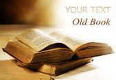 Vieux livre closeup — Photo