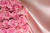 Roses And Silk — Stock Photo