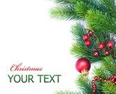 Christmas Tree Border design over white — Stock Photo