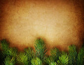 Christmas Fir Tree Border over Vintage background — Stock Photo