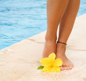Legs In The Swimming Pool. Vacation Concept — Stock Photo