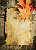 Autumn Leaves on the Old Paper sheet — Stockfoto