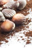 Chocolate Seashells Closeup — Stock Photo