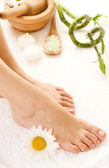 Feet Spa — Stock Photo