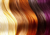 Hair Colors Palette — Stock Photo
